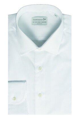 CARPASUS-white-shirt-CYMK